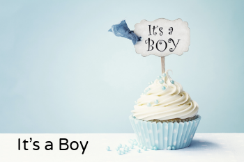 It's a Boy  The Song Factory