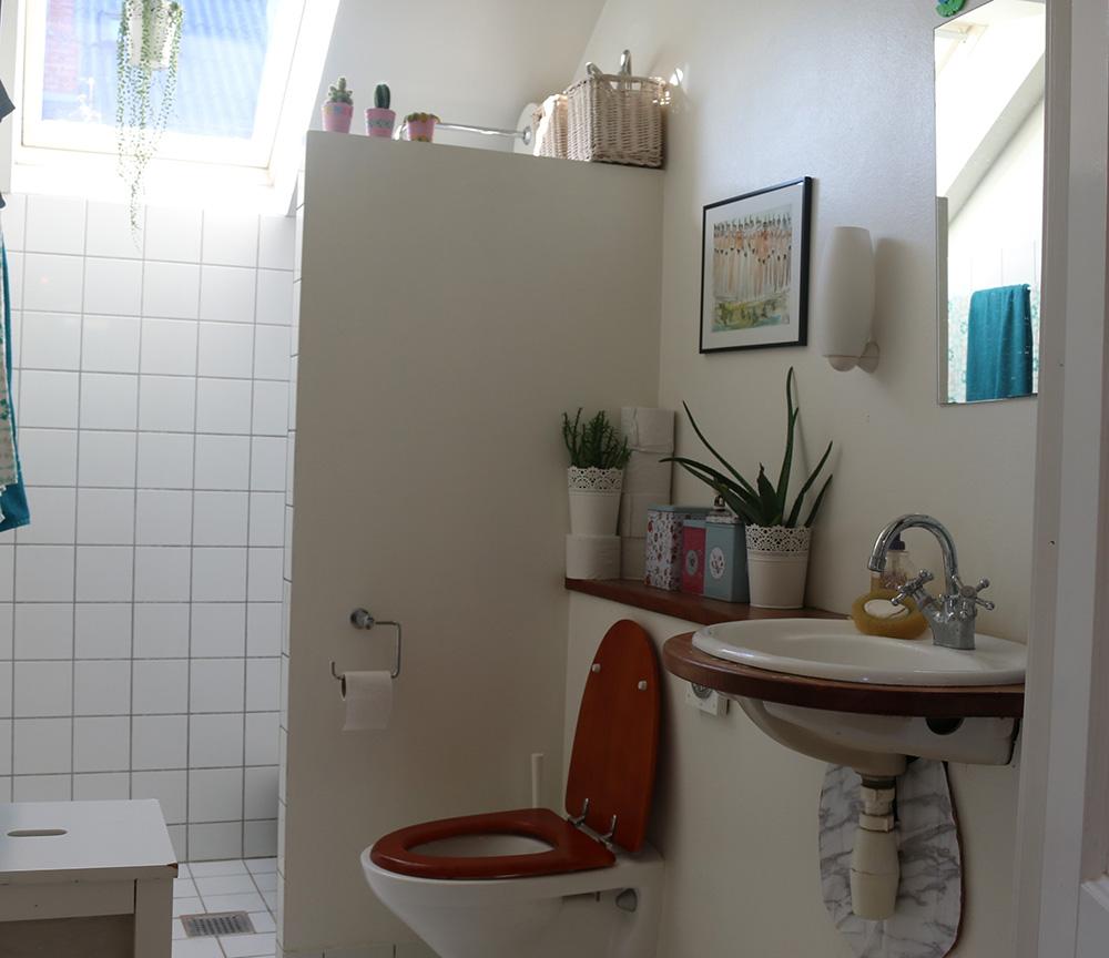toilette3.jpg