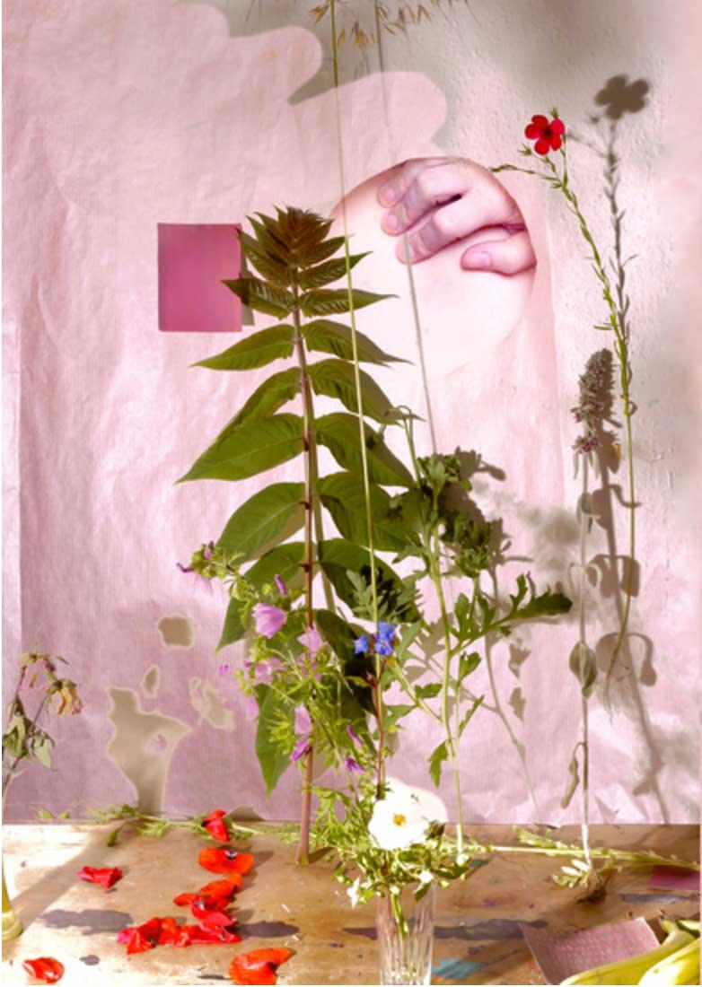 06flora2015digitalphotographdigitallymanipulated.jpg