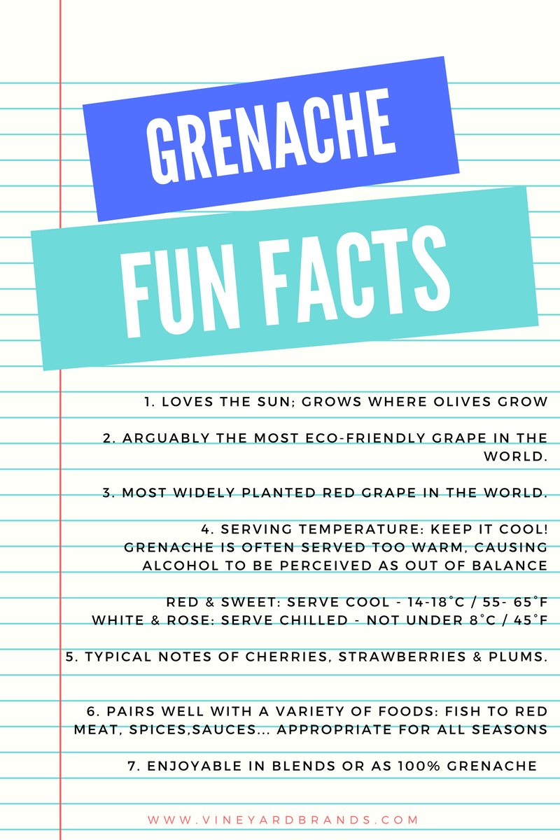 Grenache Wine Grape Fun Facts