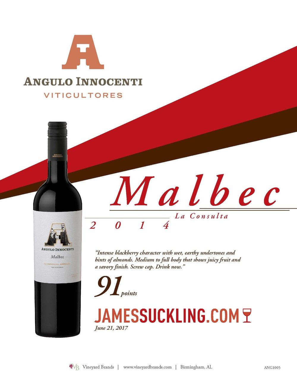 Angulo Innocenti Malbec 2014.jpg