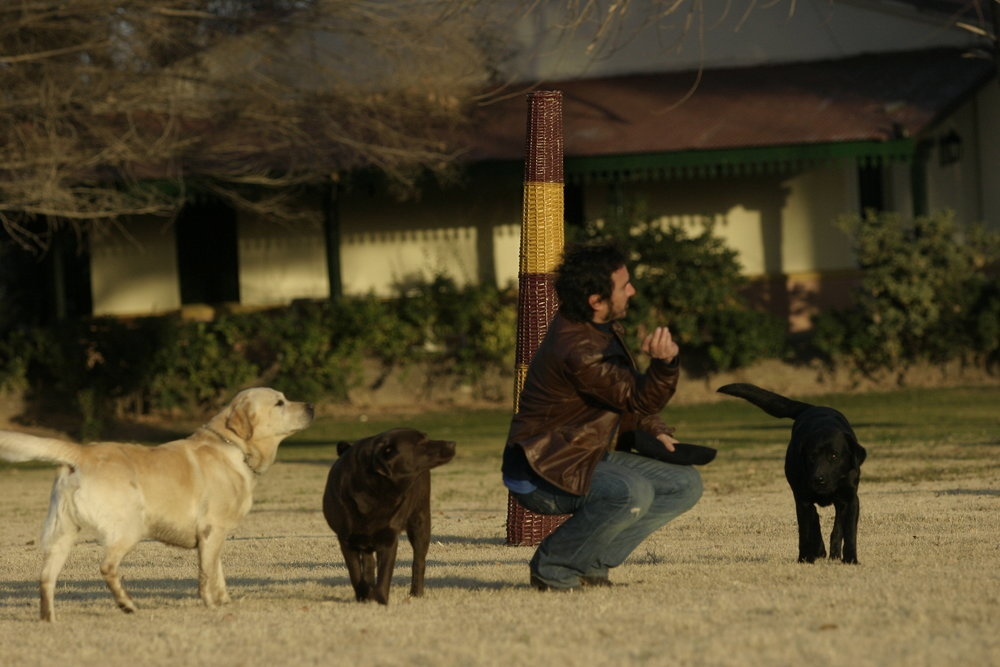 Ernesto Catena - with dogs.JPG