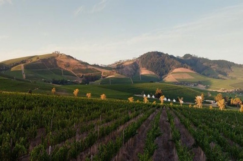 Architectural Digest: The 9 Most Beautiful Biodynamic Wineries in the World (ft. Reyneke) | 4/20/18
