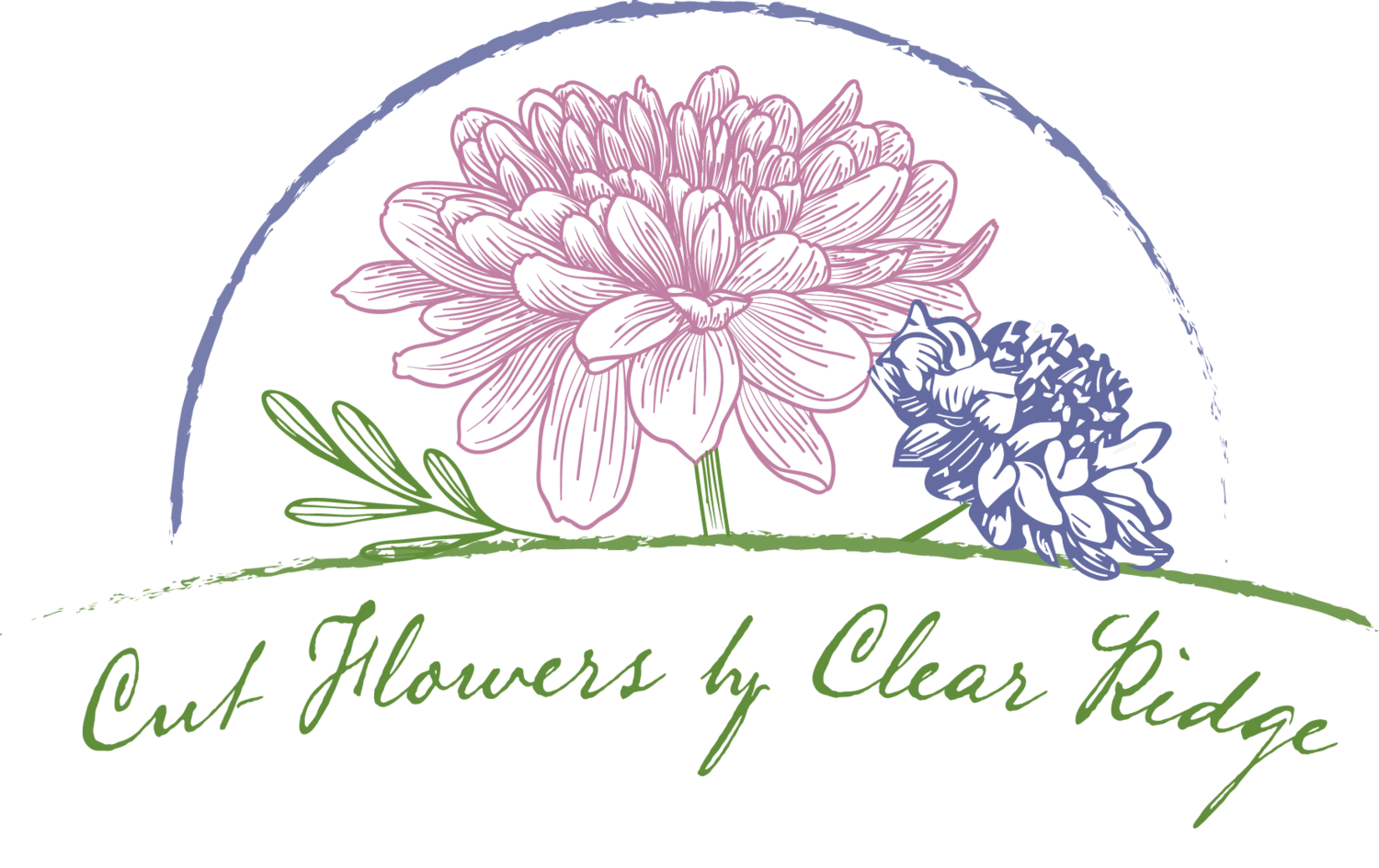 Cut Flowers by Clear Ridge