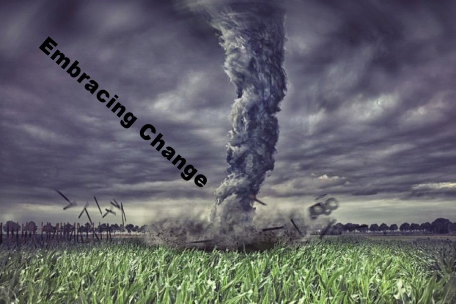 Embracing Change in our Everyday Chaos