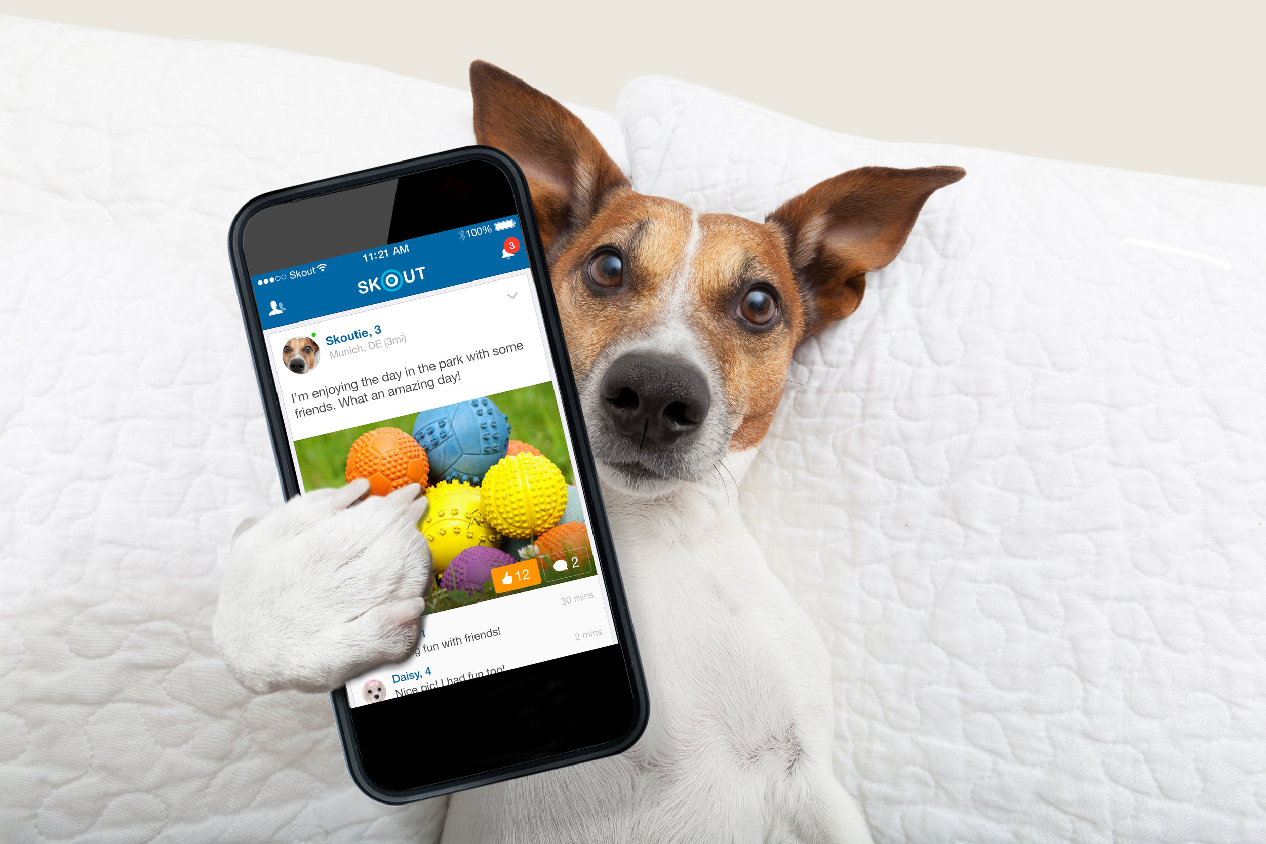 skout_app_skoutie_dog_buzz