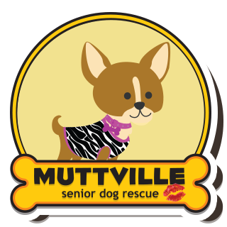 Skout CocoPuff Muttville International Kissing Day