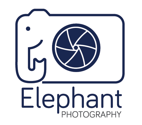 Elephant Photography