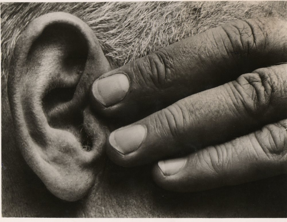 Brett Weston:  Ear and Hand, later MOMA press print.