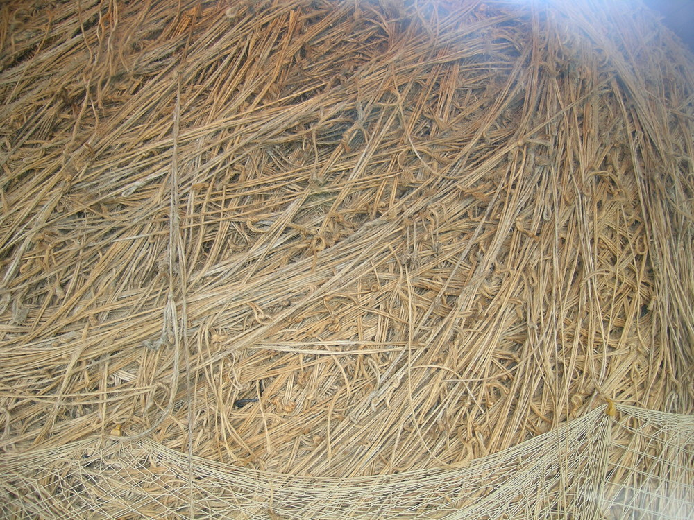 Largest ball of twine or just a big knot?