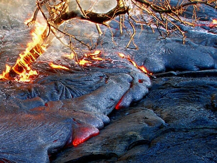 Tree_on_fire_in_active_lava_flow,_Hawaii_Volcanoes_National_Park,_USA.jpg