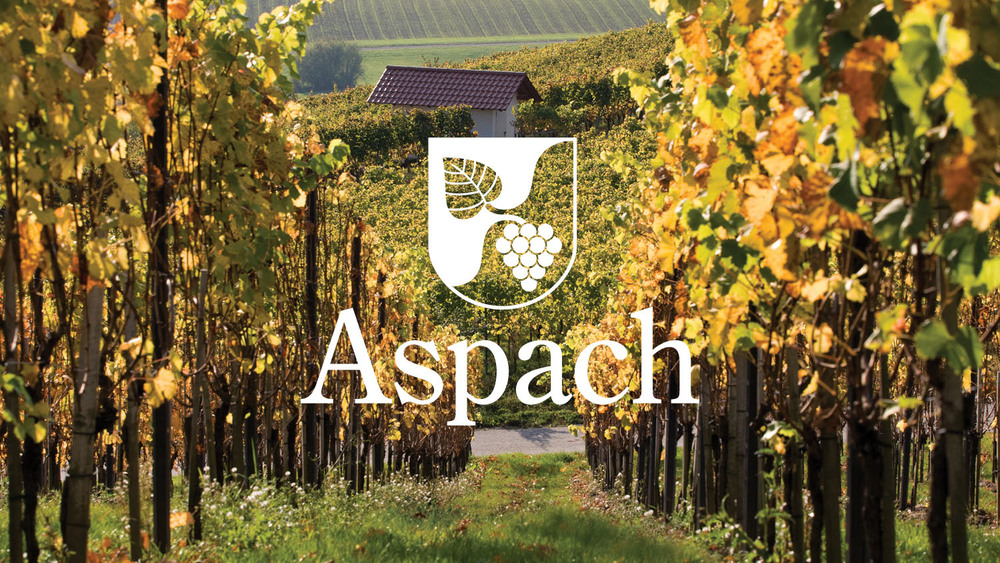 ASPACH CITY COUNCIL Branding
