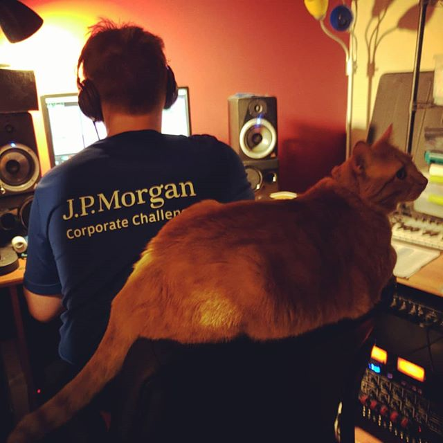 Atticus is helping us record vocals tonight #discoverermusic #localmusic #catsofinstragram #fatticus
