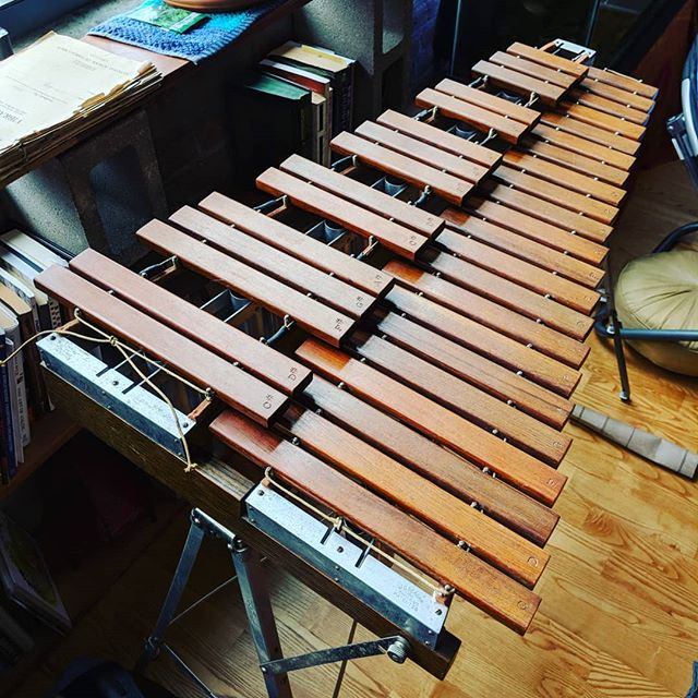 Hmmm...What ya gonna do with that xylophone, Discoverer??? #xylophone #discoverermusic #newinstrument #mallets #rosewood