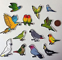 Pannya specifically created these awesome parrot    magnets    and    stickers    to support CTPR! £1 (UK pound) will be donated from every sale! Visit   https://www.etsy.com/uk/shop/pannya   and search parrot.