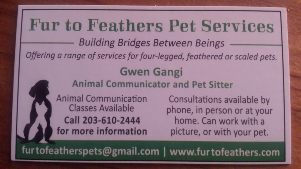 Pet communication and lost pet communication services. http://furtofeathers.com 203-610-2444 Furtofeatherspets@gmail.com