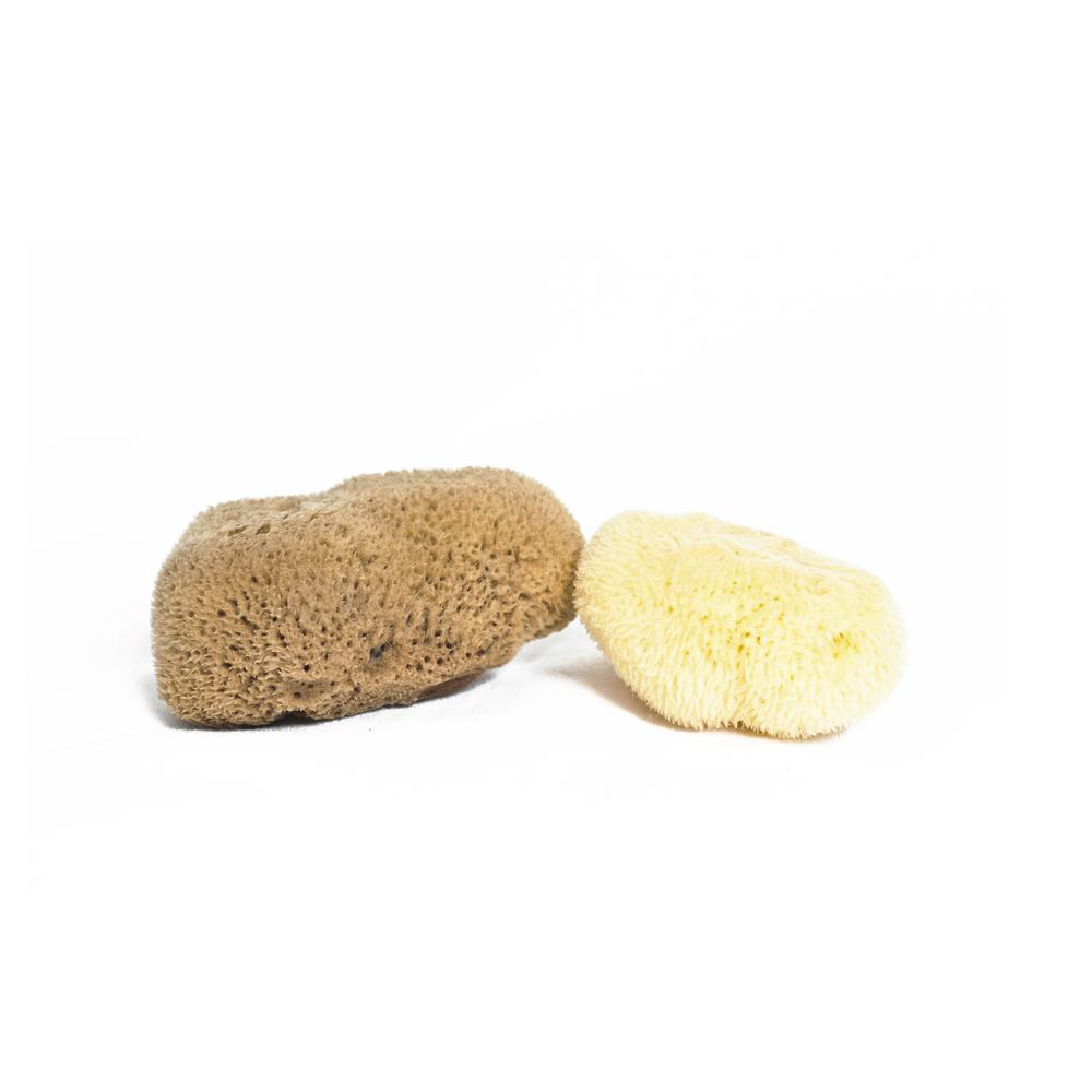 Fine Silk Sea Sponge $16.00