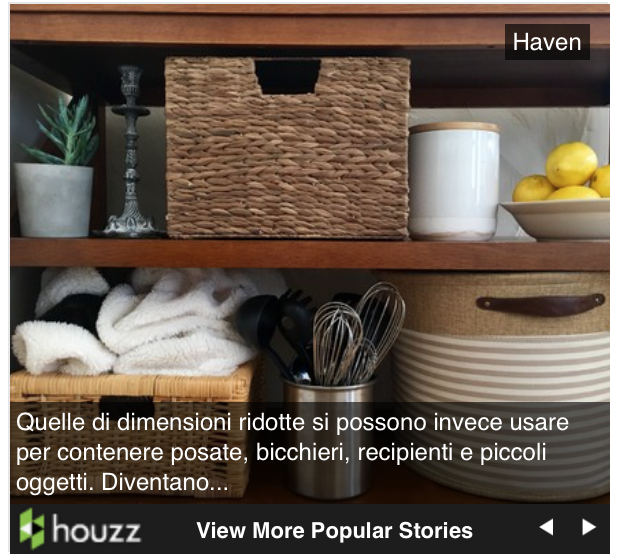 Houzz - click on the photo to the left to read our article on HOUZZ.com