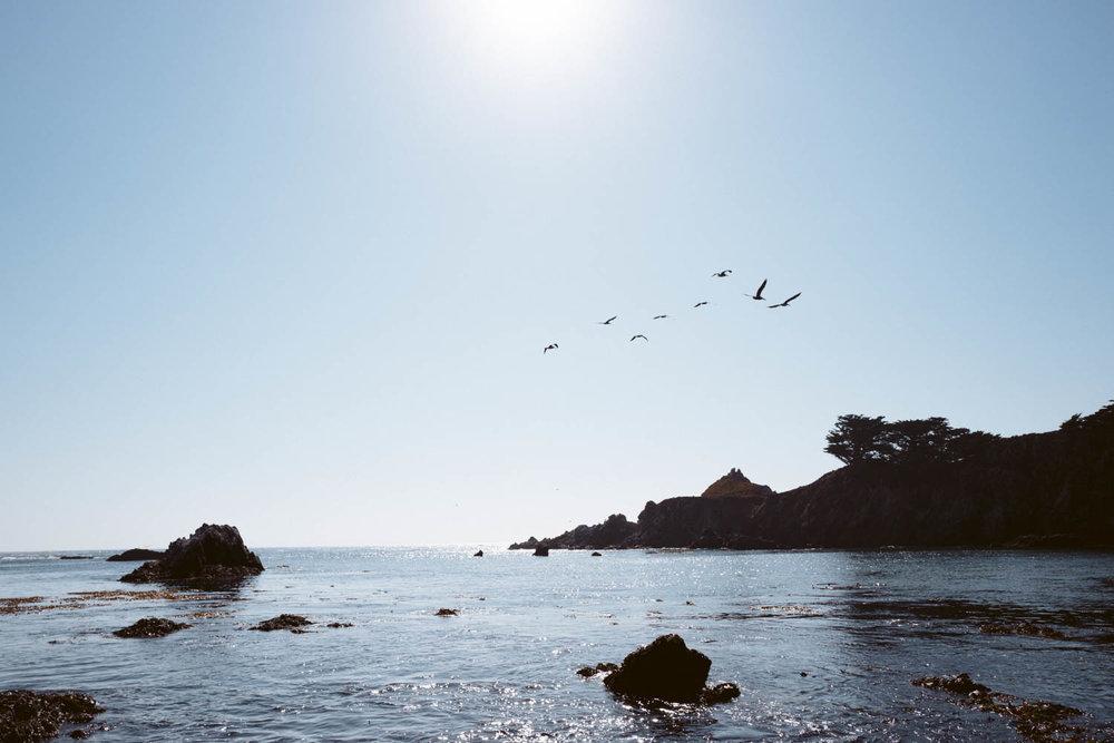 Carmel-1060609.jpg