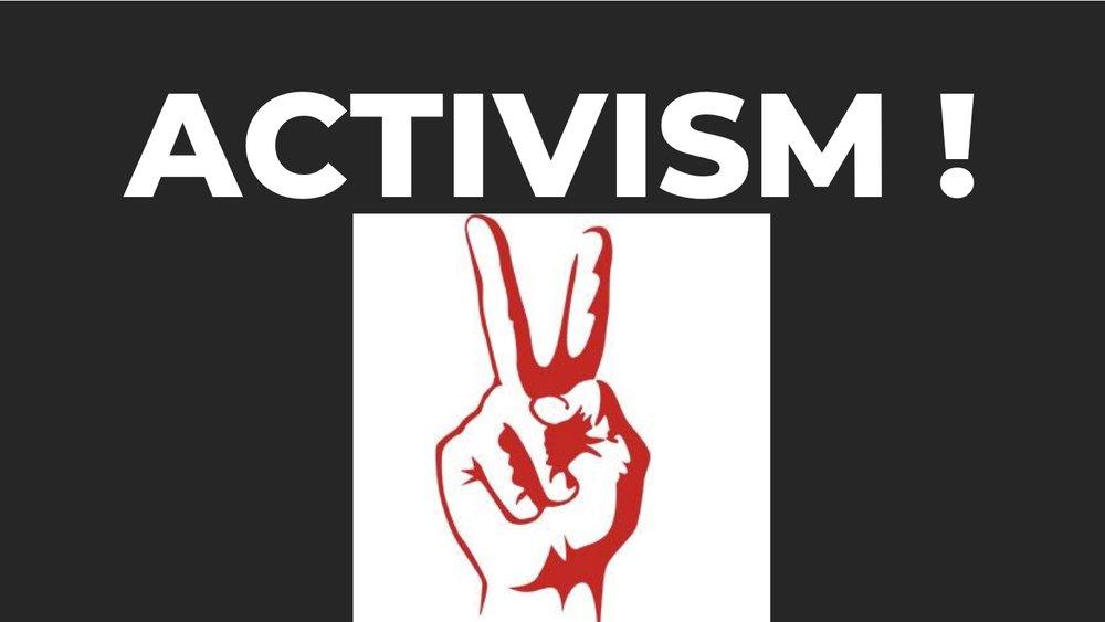 Activism1.jpg