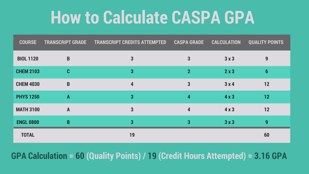 How to Calculate CASPA GPAlBe a Physician Assistant