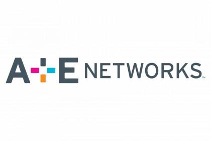 a-e-networks-logo.jpg