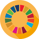 What are the SDGs?