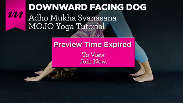 Time Expired - Downward Dog Tutorial | Compose Clarity