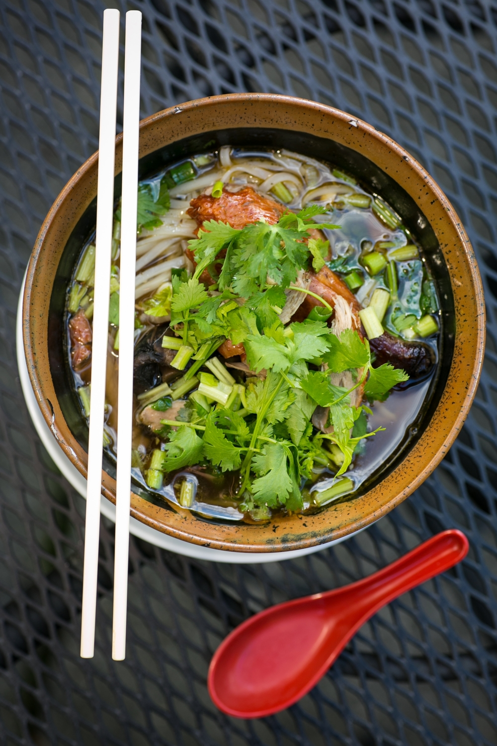 ROASTED DUCK NOODLE SOUP: