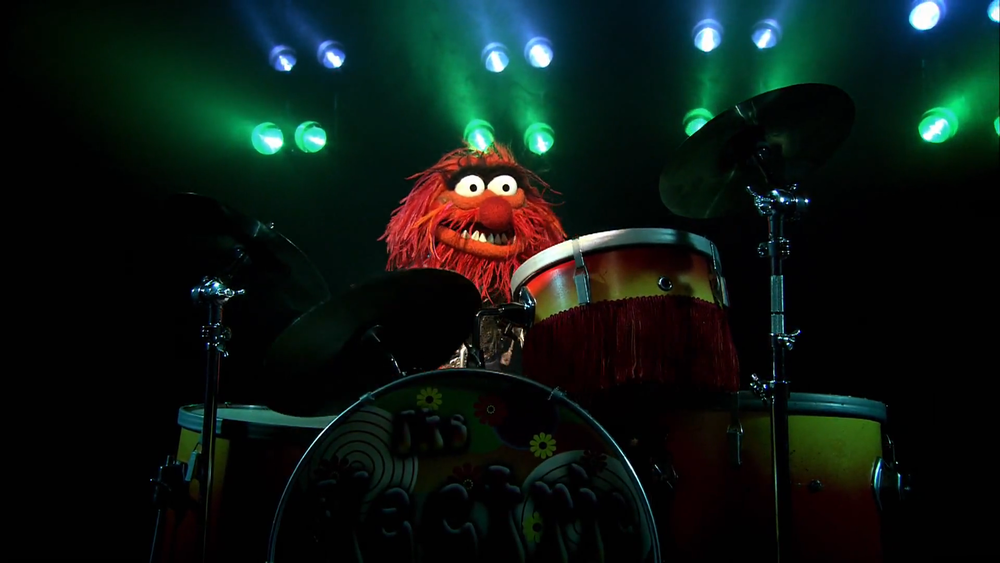 animal playing drums.png
