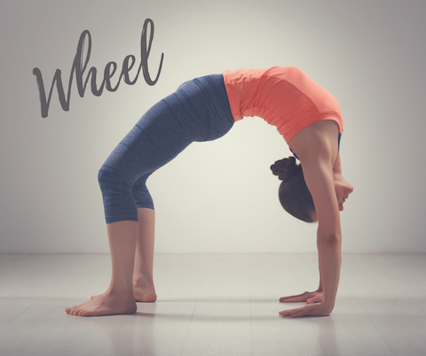 Wheel yoga asana