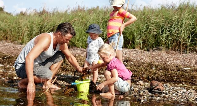 Krabbefiskeri er en af de aktiviteter, som flere havne tilbyder familier hen over sommeren.
