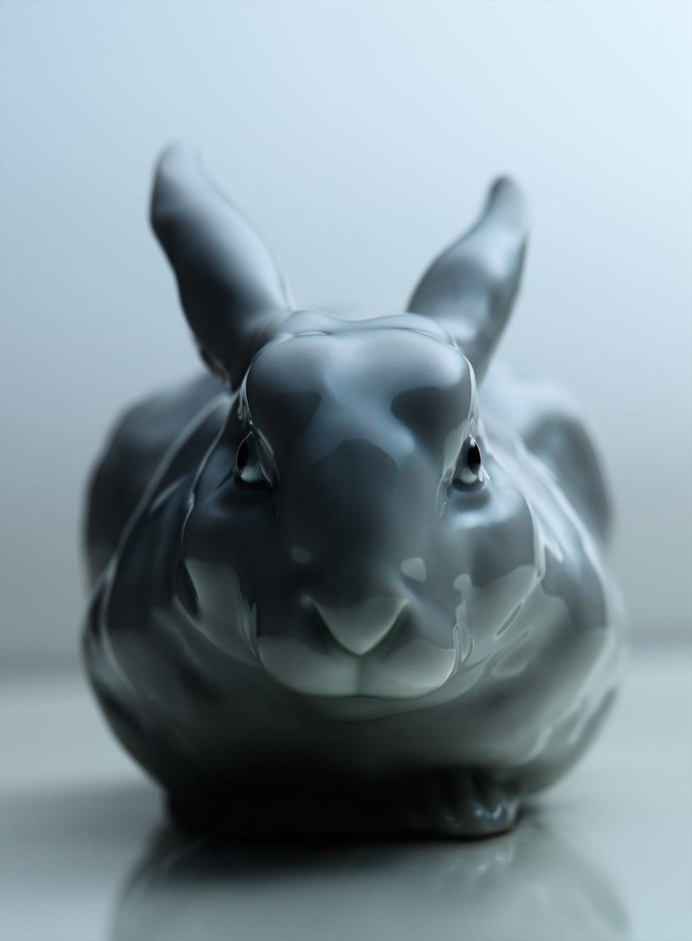 White Rabbit / Personal Work