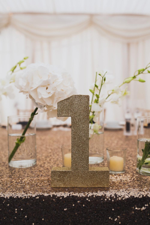 middleton-lodge-north-yorkshire-teesside-wedding-photographer-0025.jpg