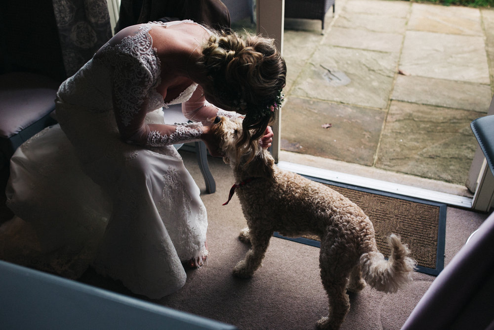 a bride pets her dog. wedding at priory cottages in wetherby near leeds. stop motion wedding films videos uk