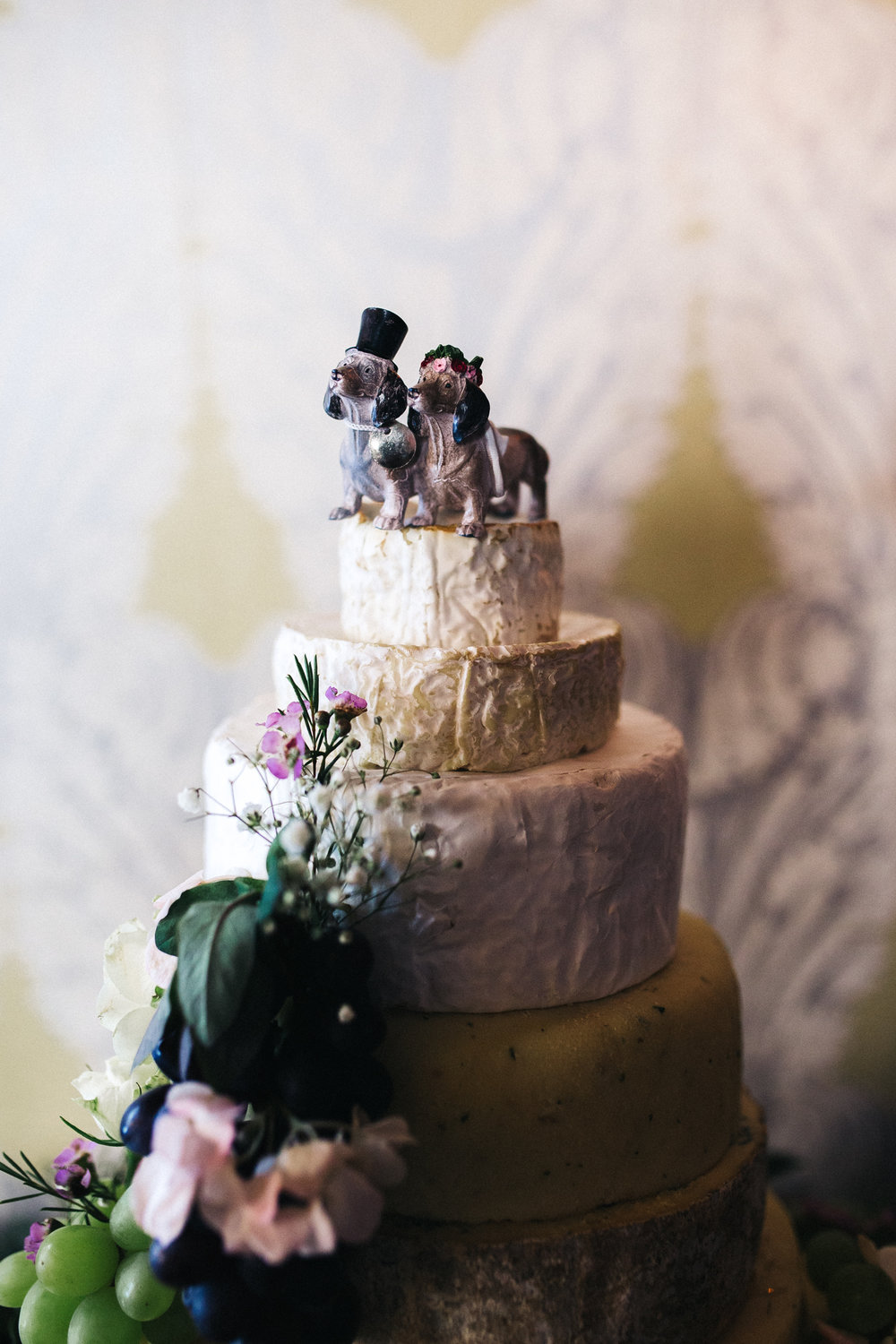 a cheese wedding cake with a daschund bride and groom on top. ceremony at st georges hall liverpool, oh me oh my wedding reception, north west wedding photographer