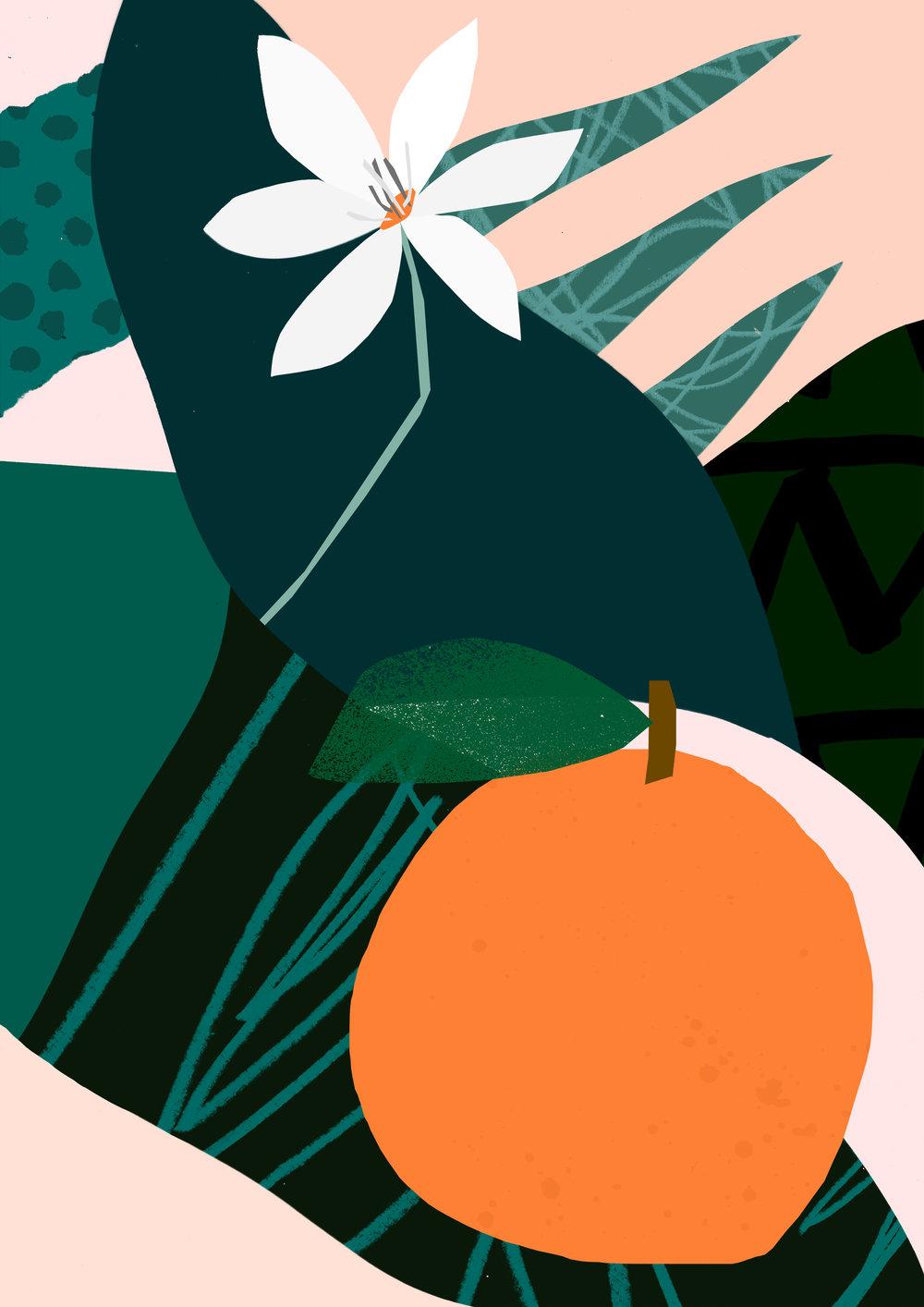 'Orange' -