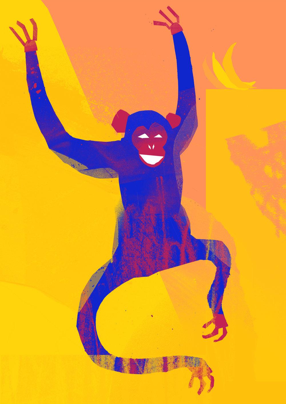 'Cheeky Monkey'