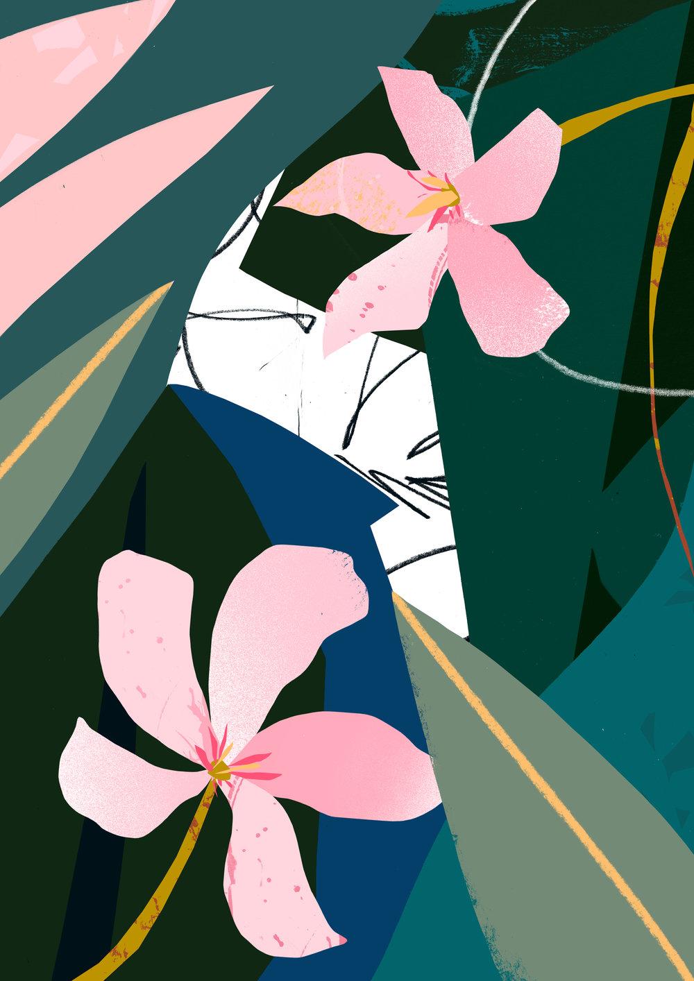 'Oleander'