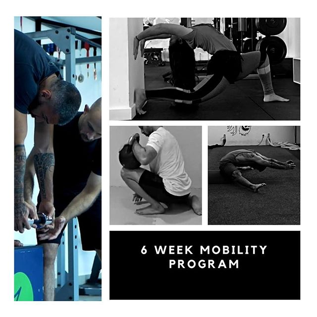Will be starting a new 6 week mobility program with a group of 6 people here in bahrain, the program will start May 3, for more details about the program check profile link bio or DM me #targettedmobility #endrangestrength #jointmobility #movementandmobility #movementbahrain #arfitnessbh #pancakemobility #thoracicbridge #squatmobility #hipmobility #anklemobility #shouldermobility #spinemobility