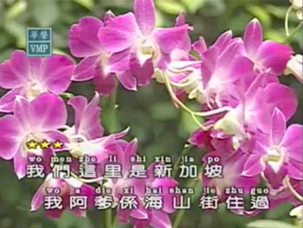 3. Screen shot of karaoke vid.jpg
