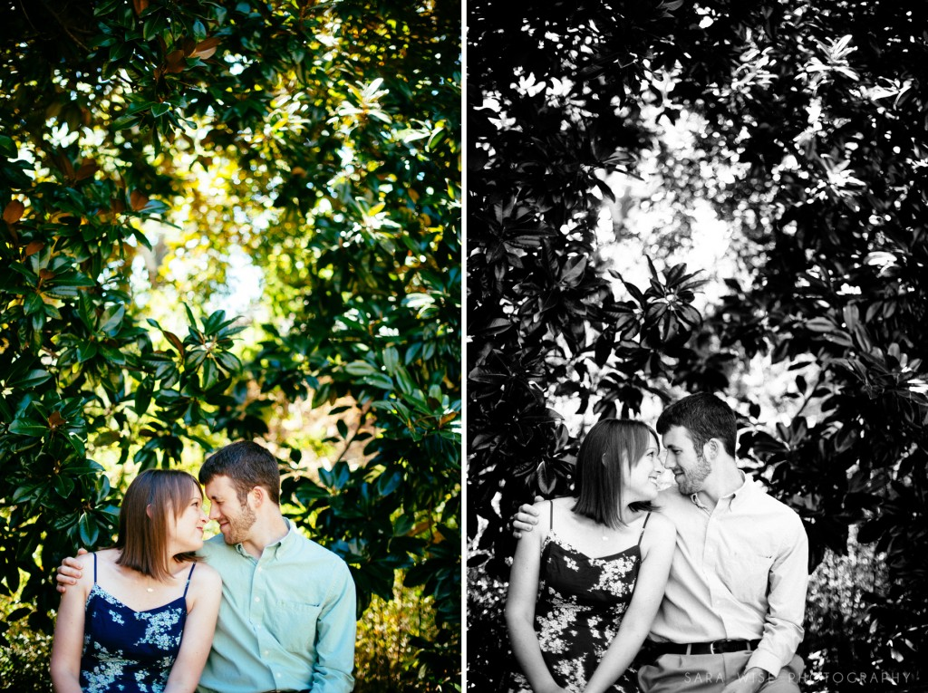 Carlton_engagement005