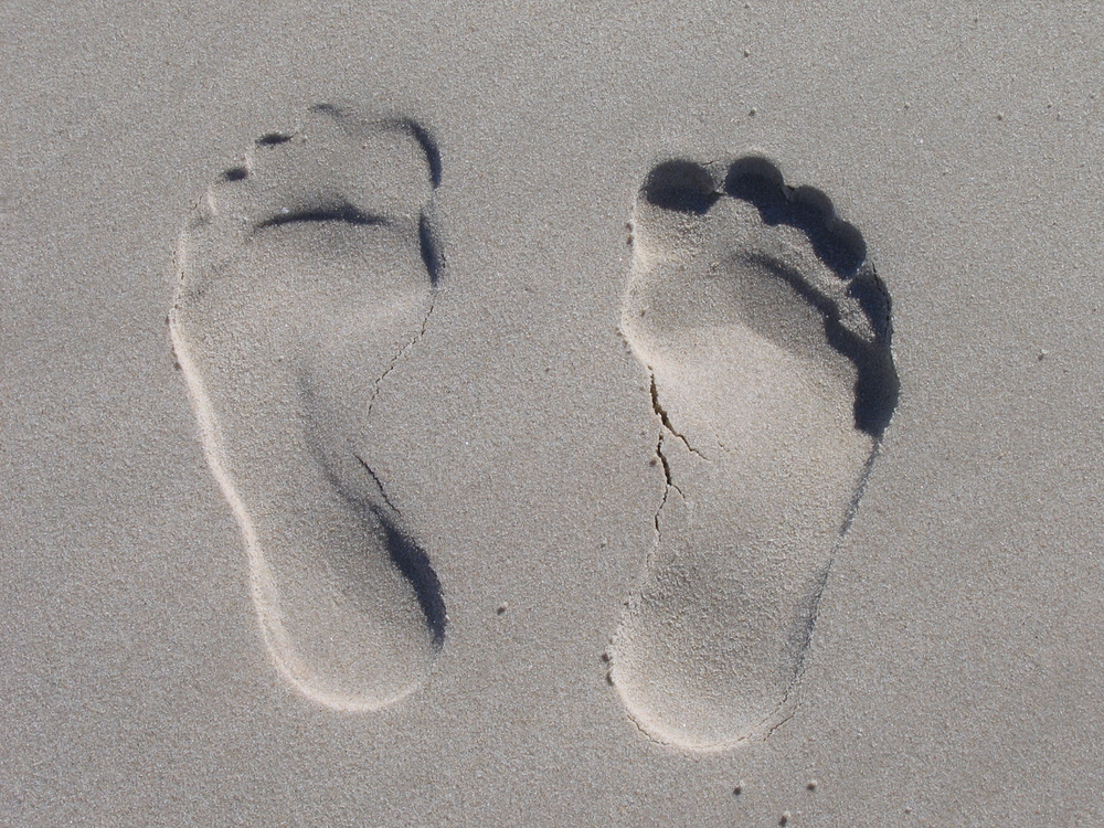 footprints.png