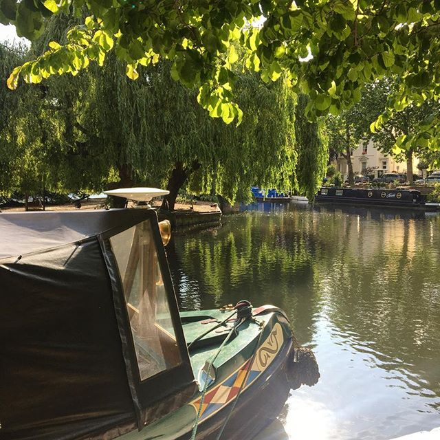 Happy Friday from Little Venice🛶 #london#londonwalks#happyfriday#blog#blogger#londonlife#londonmoments#maidavale#bloom#bloominlondon#bloomeverywhere#summerinthecity#littlevenice#