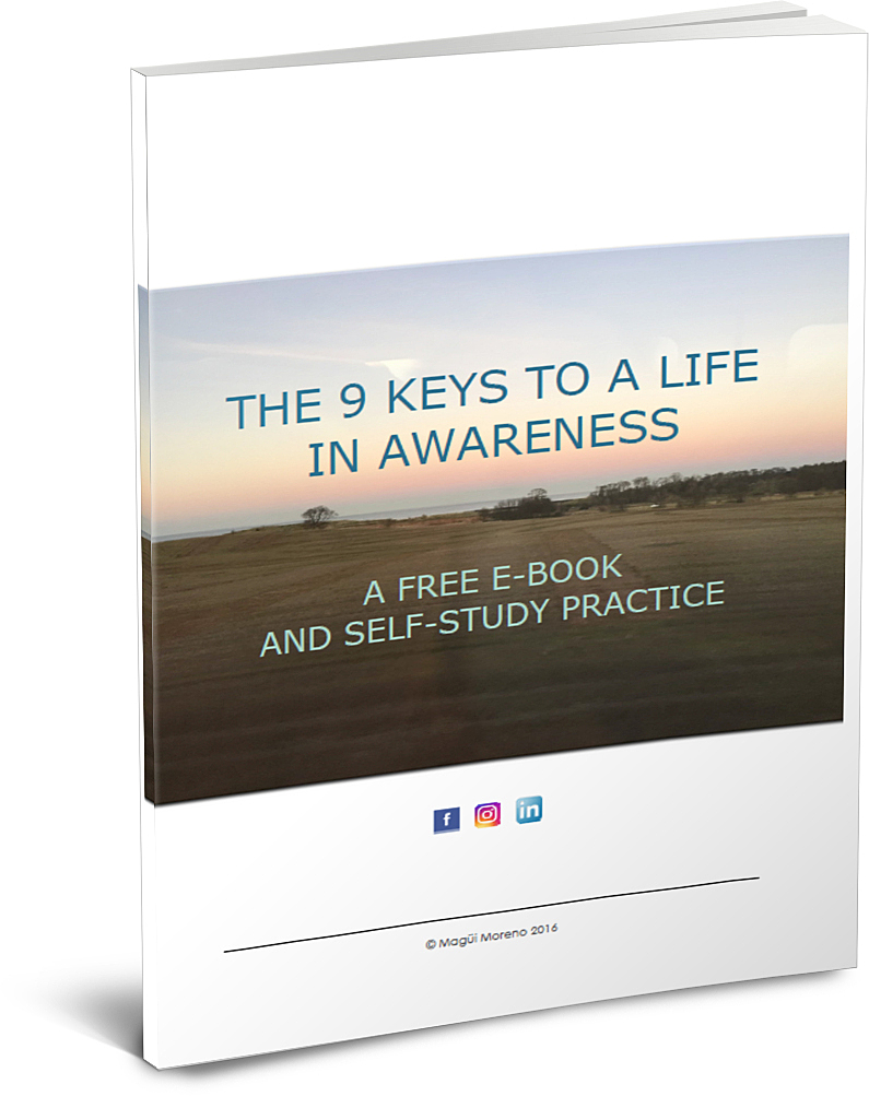 The 9 Keys to A Life in Awareness - In this ebook and self-study practice I discuss the key pointers to living mindfully. It is full of practical tips and tools for increased self-awareness in our daily life.