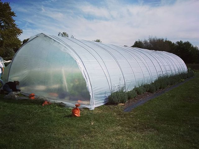 All the tunnels are covered!! #extendedseason  #organic #organicfarm #brickelcreekorganic #womenwhofarm