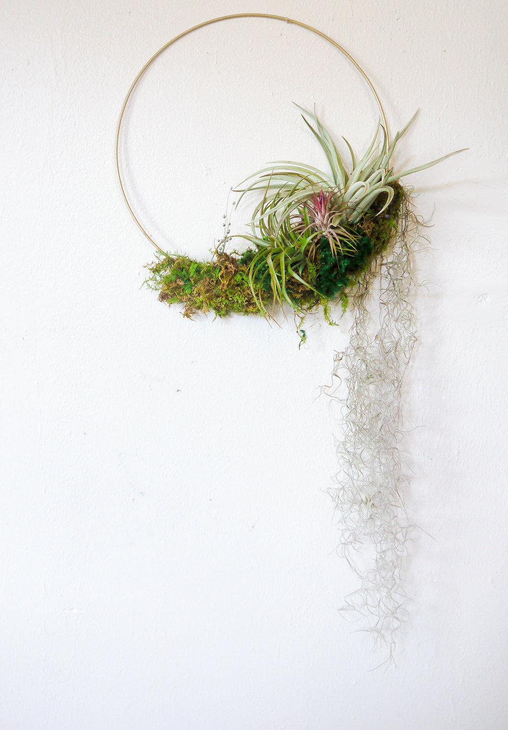 Air Plant Wreath w- Spanish Moss-2.jpeg