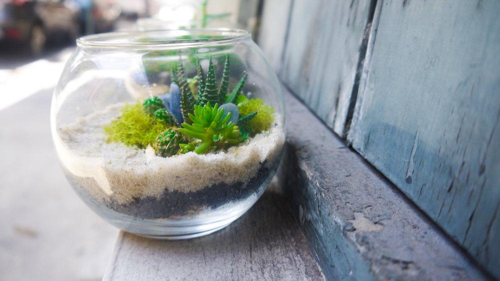 Succulent + Crystal Terrarium FQ-8.jpg