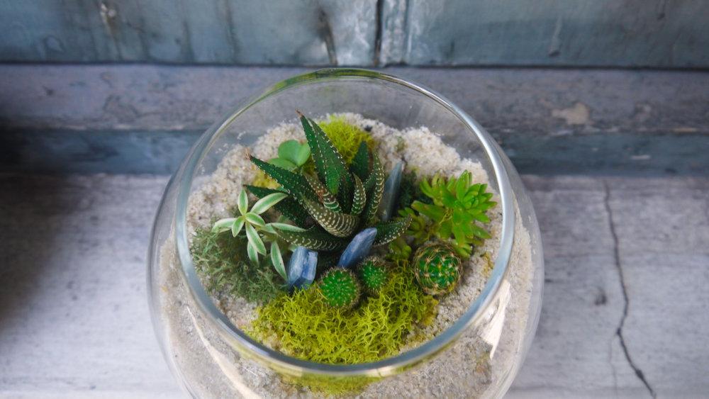 Succulent + Crystal Terrarium FQ-11.jpg