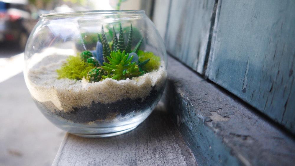 Succulent + Crystal Terrarium FQ-9.jpg